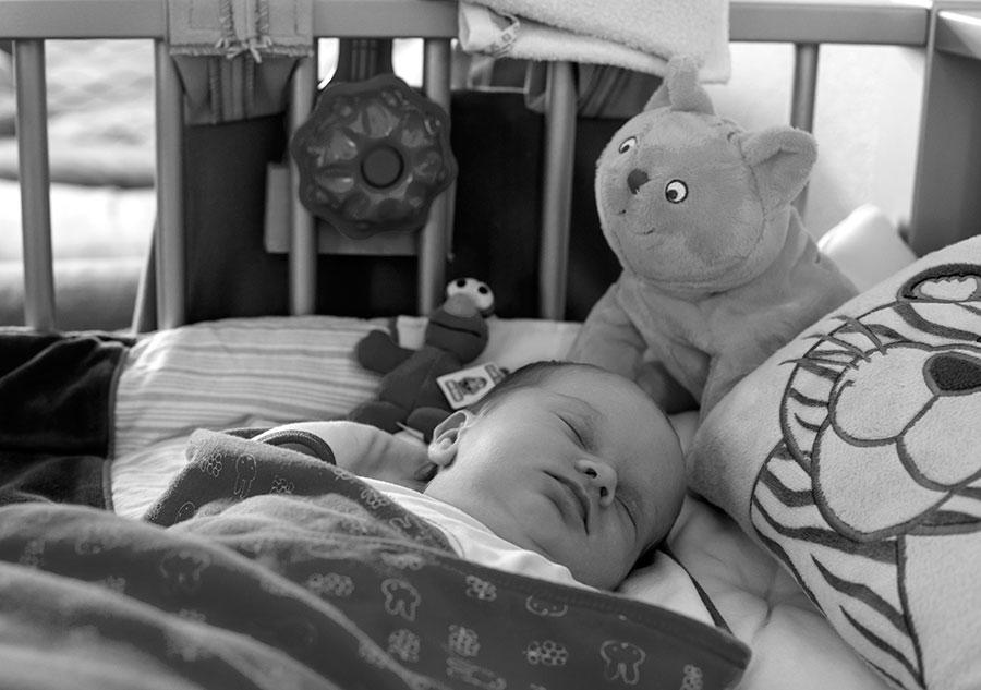 Newbornfotograaf Delft: baby en Dikkie Dik