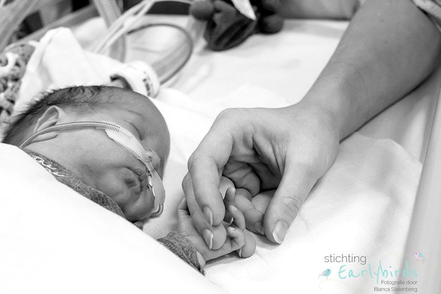 newborn fotograaf Milo Delft